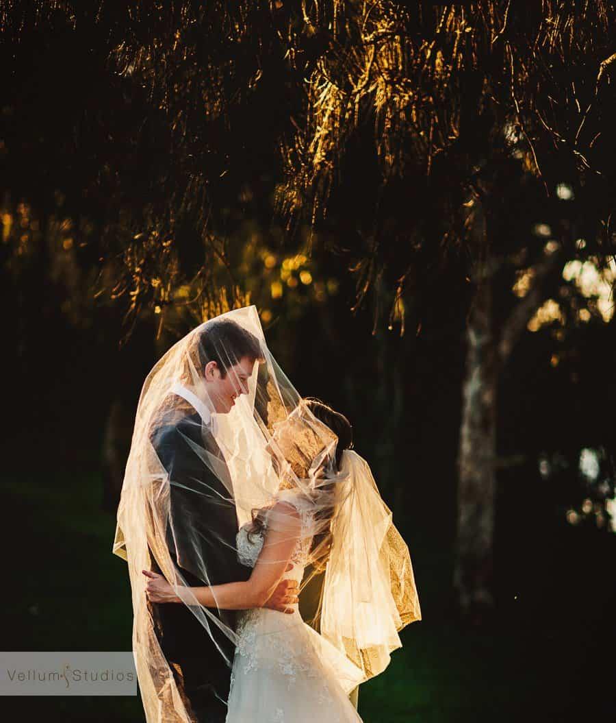 Wedding Photography Brisbane - Veil